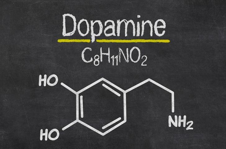 https://paddotherapie.nl/wp-content/uploads/2020/01/dopamine.jpg