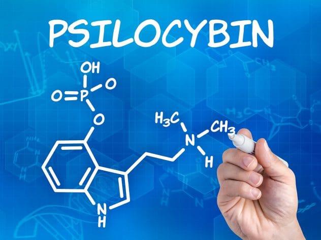 Psilocybine therapie